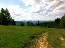Summer Ukrainian Carpathians Stock Photos