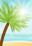 Summer vacation background Royalty Free Stock Photo
