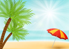 Summer vacation background with palm Royalty Free Stock Photos