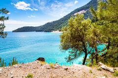 Summer vacation background with turquoise sea water bay, nountains, pine trees Stock Image