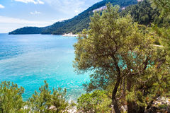 Summer vacation background with turquoise sea water bay, nountains, pine trees Stock Photos