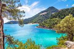 Summer vacation background with turquoise sea water bay, nountains, pine trees Stock Images