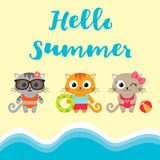 Summer vacation card with kittens Stock Images