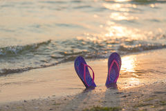Summer vacation concept. Colorful flip flops on the sandy beach during sunset Stock Image