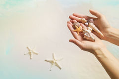 Summer vacation concept: Hands holding shells and starfish on th Stock Images
