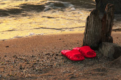 Summer vacation concept. red Flipflops on a sandy ocean beach.Wild uncomfortable beach. The sunset, the beach, the Royalty Free Stock Photo