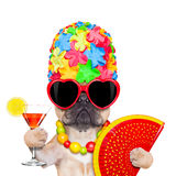 Summer vacation dog Stock Photography