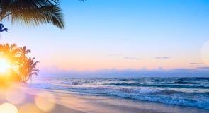 Art summer vacation drims; Beautiful sunrise over the tropical b. Summer vacation drims; Beautiful sunrise over the tropical beach royalty free stock photos