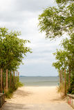 Summer vacation. Entrance to a sandy beach. Seascape. Royalty Free Stock Photos