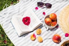 Summer vacation in garden with book and fruit stock photos