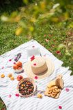 Summer vacation in garden with book and fruit royalty free stock image