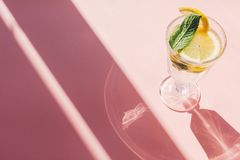 Summer vacation and party concept. fresh cocktail with lemon and Stock Photography