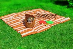Summer Vacation Picnic Scene royalty free stock image