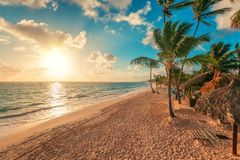 Summer vacation in Punta Cana. Beautiful sunrise over tropical island beach. Punta Cana vacation, beautiful sunrise over tropical beach in Punta Cana Royalty Free Stock Images