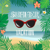 Summer vacation. Vector summer illustration hand lettering. The leaves of palm trees and tropical flowers on a background  Stock Photography
