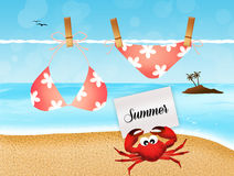 Summer vacations Stock Photos