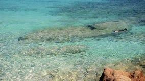 Summer vacations. Relaxing in Sardinia. Snorkeling in wonderful mediterranean sea stock video