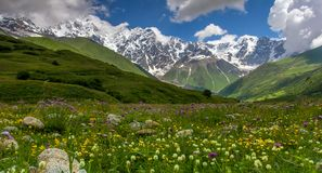 Summer valley. Summer alpine valley in Svaneti mountains in Georgia Royalty Free Stock Image