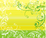 Summer vector background Stock Photo