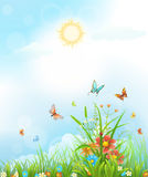 Summer vector background Stock Photography