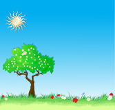 Summer vector Background with tree and flowers Stock Photos