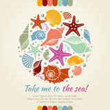 Summer vector concept with shells and sea stars. Summer round composition shell sea, starfish and sea shell, nature aquatic sea star and shells illustration Stock Photo