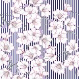 Summer Vector garden floral seamless pattern.White flowers pattern blooming royalty free illustration