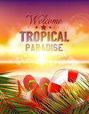 Summer vector poster Royalty Free Stock Images