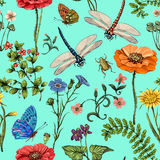 Summer vector seamless pattern. Botanical wallpaper. Plants, insects, flowers in vintage style. Butterflies, dragonflies. Beetles and plants in the style of Royalty Free Stock Photo