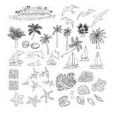 Summer vector set tropical plants and water animals. Island with palm among ocean, different dolphins seagulls fish and. Other underwater inhabitants. Black royalty free illustration