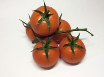 Summer veg. Five fresh tomatoes on the vine sprayed with water Stock Photo