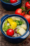 Summer vegetable soup Royalty Free Stock Photo