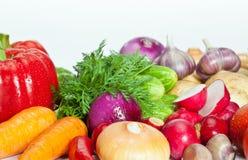Summer vegetables Stock Images