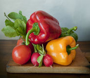 Summer vegetables on a chopping board Stock Photography