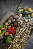 Summer vegetables in a farm Stock Photo