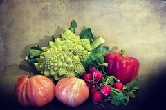 Summer vegetables on grunge background Stock Photography