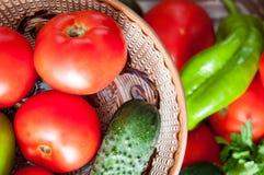 Summer vegetables Stock Photos