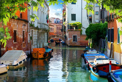 Summer in Venice Stock Photography