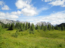 Summer view of the Alps near Ampezzo, Italy Stock Photography