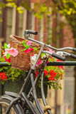Summer view of bicycles in the Dutch city Amsterdam Royalty Free Stock Photo