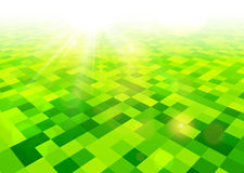 Summer view blurry field background. Green field checkered background Vector illustration Royalty Free Stock Photos
