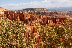 Summer view of Bryce Canyon. With green trees and pines stock photo
