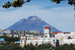 Summer view of City Petropavlovsk-Kamchatsky and Koryak Volcano Stock Images