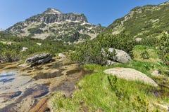 Summer view of Dzhangal peak and Banski lakes, Pirin Mountain Stock Photo
