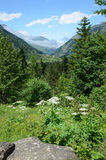 Summer view of the French Pyrenees Royalty Free Stock Photo