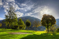 Summer view. Green grass on a background of mountains Royalty Free Stock Photo