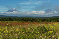 Summer view of Koryaksky and Avachinsky volcanoes shrouded in clouds. Stock Image