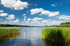 Summer view at the lake Royalty Free Stock Photography