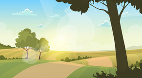 Summer View Landscape Rural Road Green Grass Blue Sky Sunset. Flat Vector Illustration Stock Images