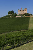 Summer view in the Langhe Unesco heritage Stock Photography